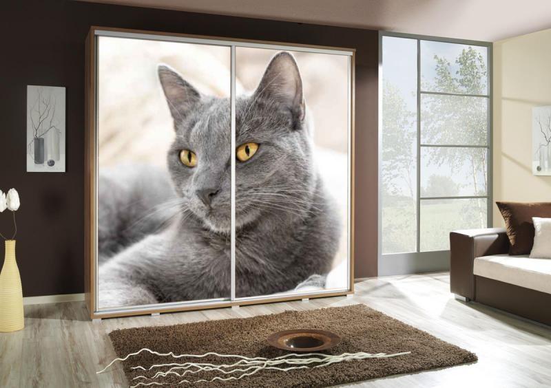 Ložnice Kočka, Penelopa kočka