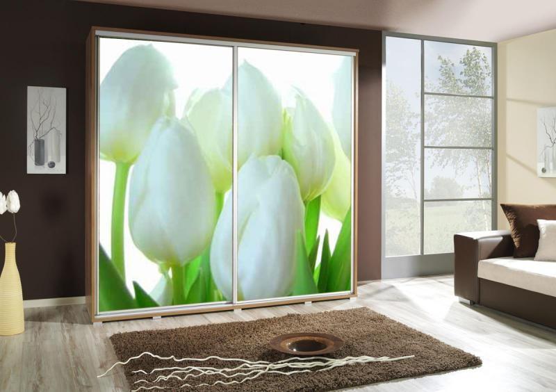 Ložnice Tulipány, Penelopa tulipány